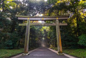 14-Day Pass – East to South Itinerary