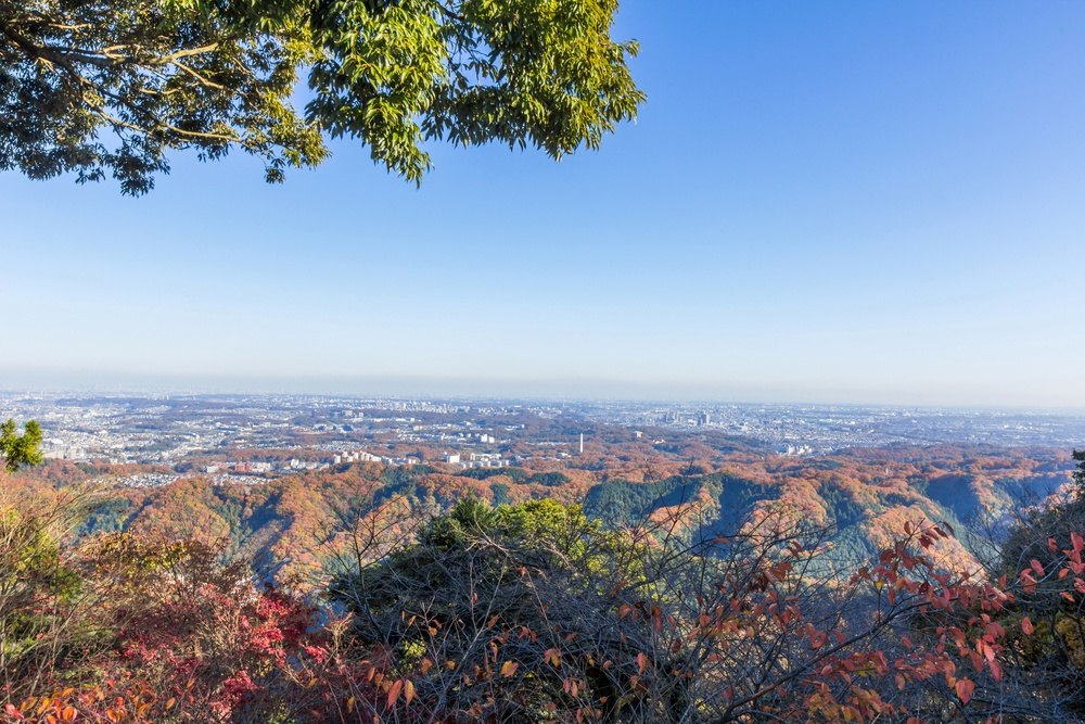 View from Mt. Takao in Autumn